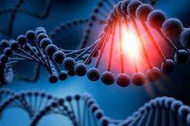 ADN tregon se kur është koha më e mirë për ta humbur virgjërinë