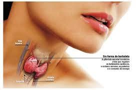 Kuroni tiroidet me këtë recetë natyrale