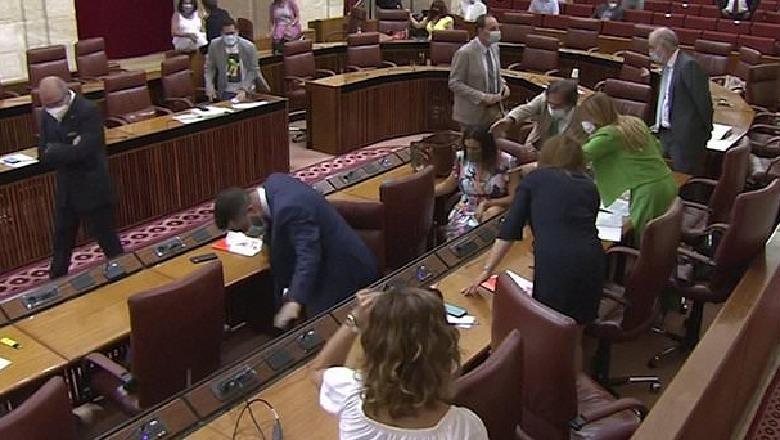 Miu ndërpret seancën parlamentare, deputetët largohen të tmerruar (VIDEO)