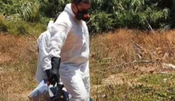 Gjendet skeleti i një njeriu brenda në fuçi në Greqi, mund t`i përkasi një shqiptari