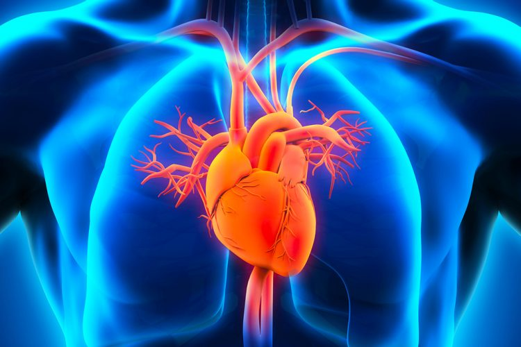 Shenjat e atakut kardiak që ndryshojnë te gratë