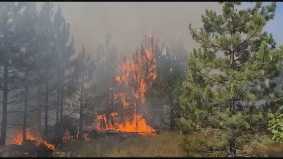 Erërat e forta riaktivizojnë vatrën në Malin e Thatë