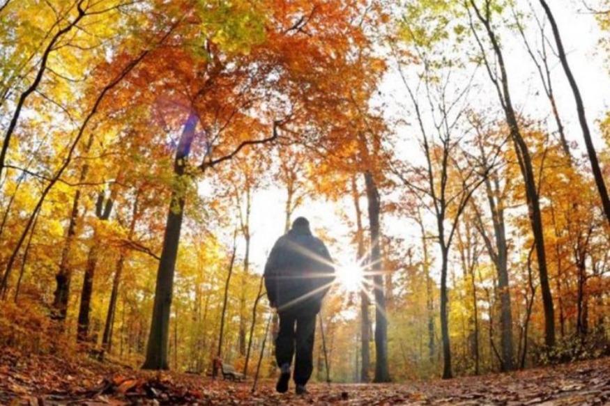 Stina e alergjive të forta, si të mbroheni nga sëmundjet e vjeshtës